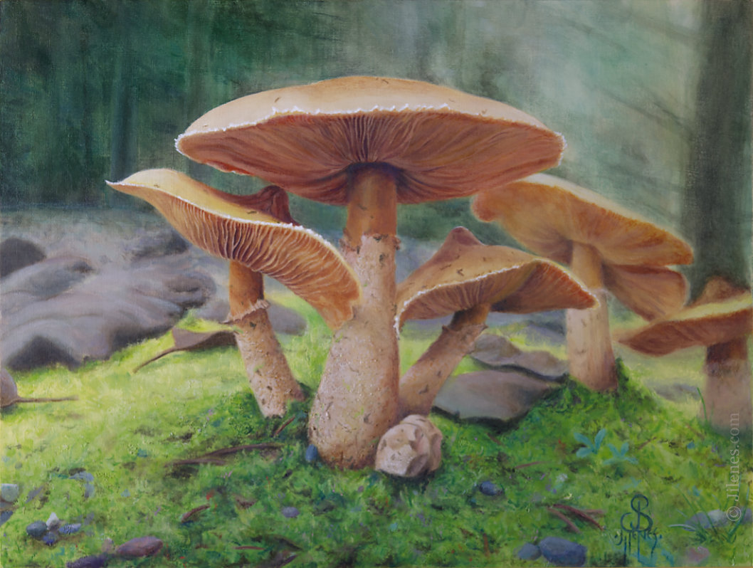 Painting of a grouping of mushrooms with moss in a forest setting