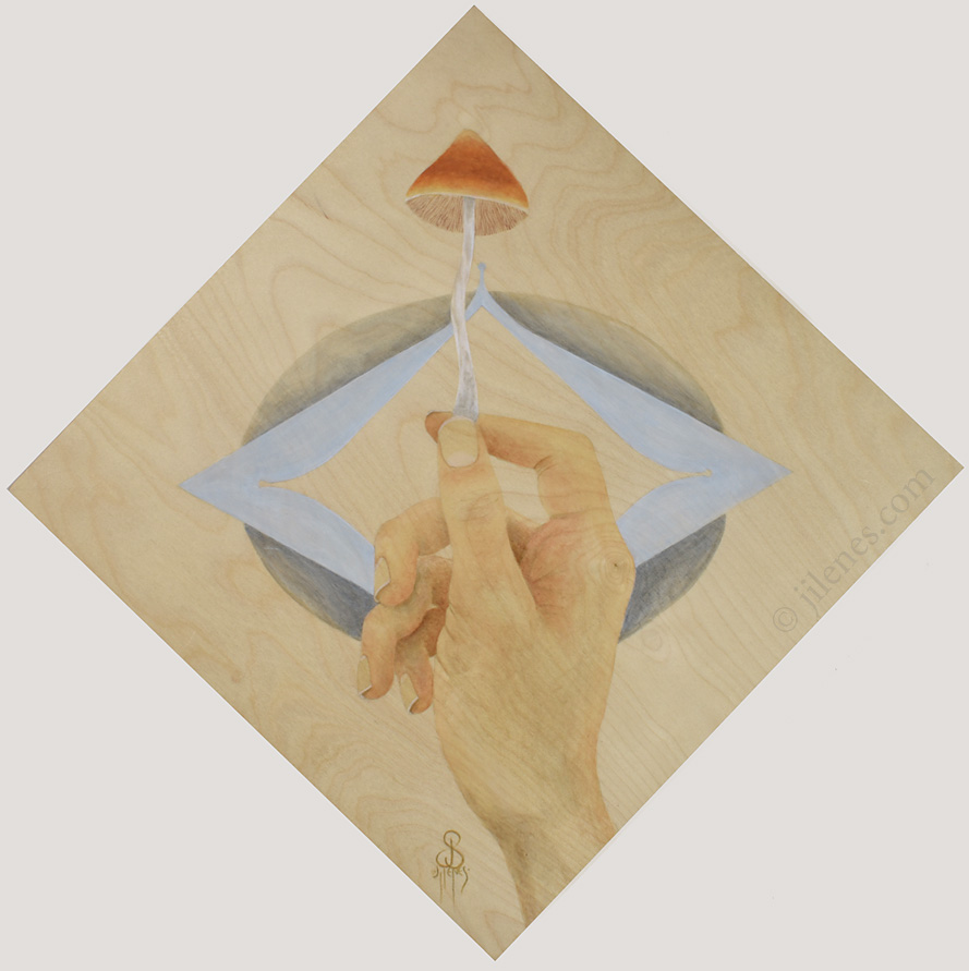 Acrylic painting of a hand holding a mushroom with simple design and woodgrain showing on background